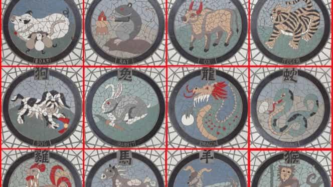 Zodiacul Chinezesc pentru săptămâna 4-10 martie 2019. Perioadă încărcată pentru șobolani