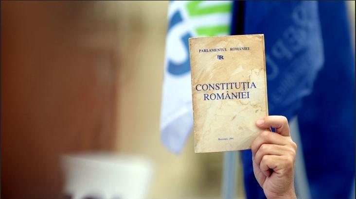 Melania Medeleanu a criticat referendumul pentru familie.