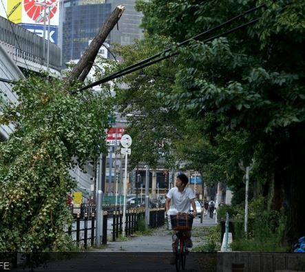 ciclonul jebi a facut dezastru in japonia