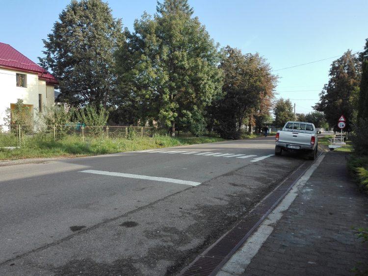 Un localnic din Botosani si-a facut singur trecerea de pietoni