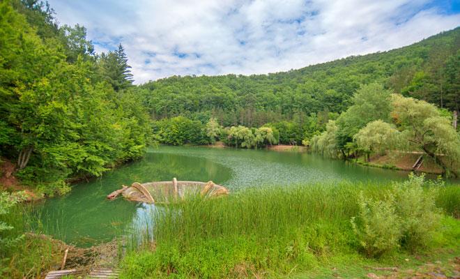 Frmusețea naturii, vizibilă în specail în România