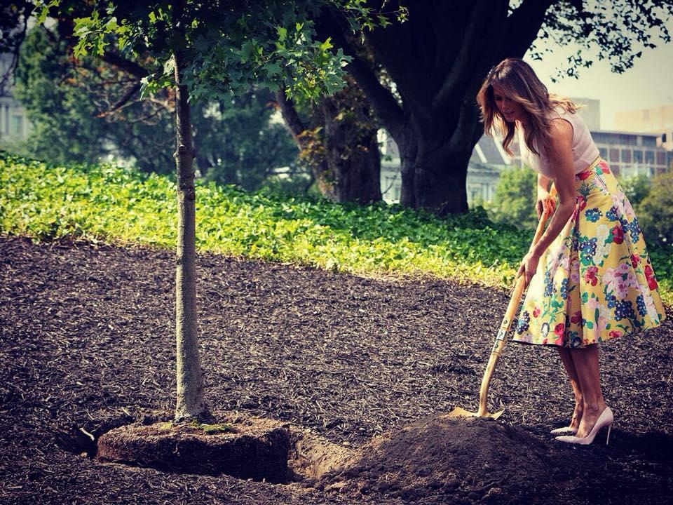 În luna august a acestui an, Melania Trump a plantat un copac având în picioare pantofi Christian Louboutin.
