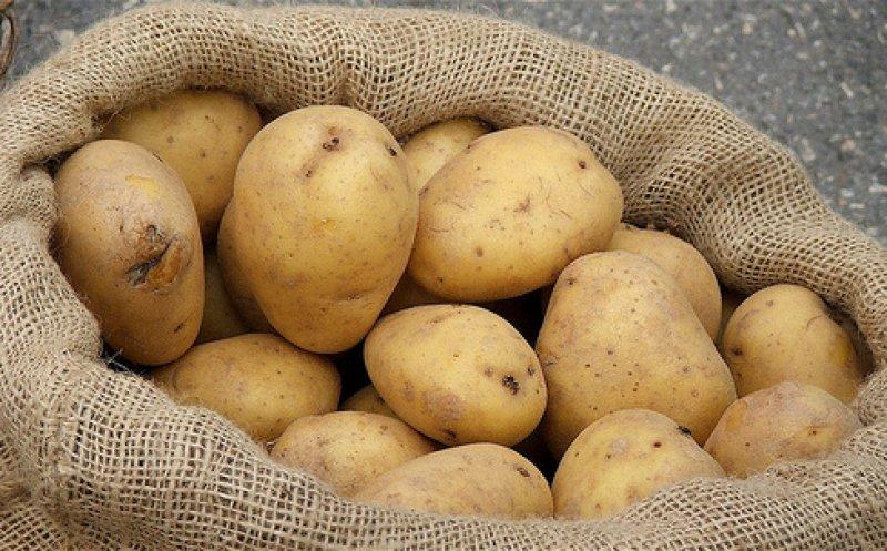 dieta rapida cu cartofi fierti. Aceasta nu trebuie tinuta mai mult de 3-5 zile