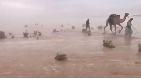 Captură realizată din timpul inundaţiilor care au avut loc în deşertul din Golful Persic. Imagini incredibile cu vegetaţia sub ape