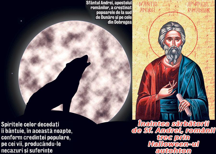 Ziua Sfântului Andrei este cunoscută în tradiția populară drept Ziua Lupului, când fiarele coboară din munți în haite de câte 12, care se destramă abia la Bobotează