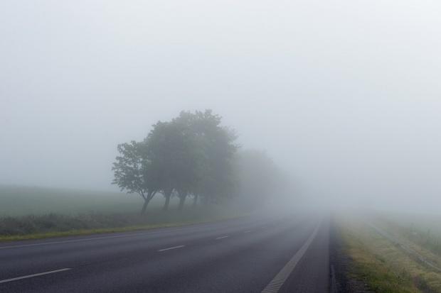 Ceaţă pe un drum din România