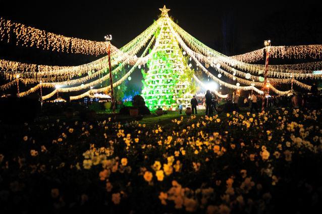 Târg de Crăciun București