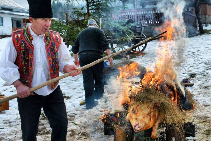 Tradiții și obiceiuri de Ignat. Ce fac țăranii din moși-strămoși pe 20 decembrie cu porcii din gospodărie îngrășați pentru Crăciun
