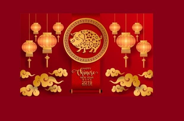 În zodiacul chinezesc, 2019 este anul Mistreţului