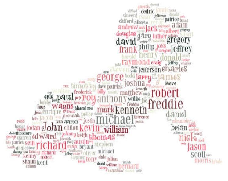 Cele mai des întâlnite nume pe Facebook nu sunt aceleași cu cele mai frecvent întâlnite în viața de zi cu zi în multe țări europene. România face excepție