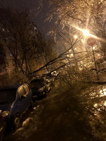 Circulația în București se desfășoară cu dificultate din cauza vremii nefavorabile. Mijloacele de transport în comun sunt cele mai afectate, (Sectorul 4 din Capitală, Șoseaua Olteniței)