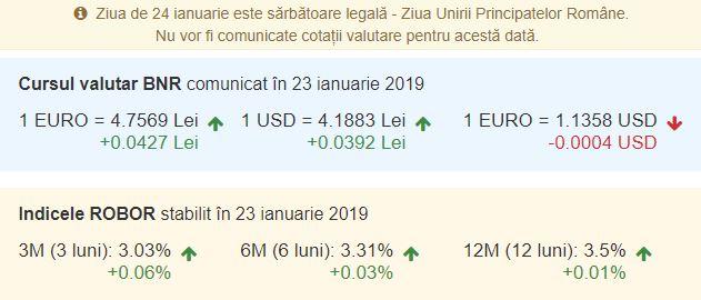 Curs BNR pentru Euro