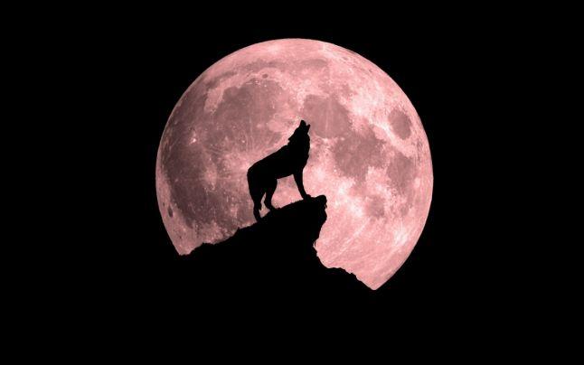 Eclipsa din această lună, vine cu un spectacol desăvârșit