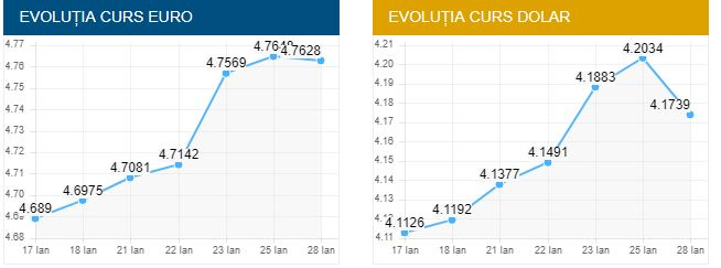 Valoarea valute euro şi dolar american