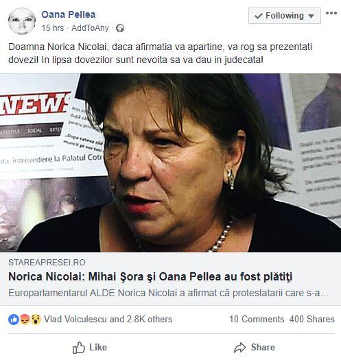 Oana Pellea o dă în judecată pe Norica Nicolai, după ce europarlamentarul i-a adus acuații grave actriței