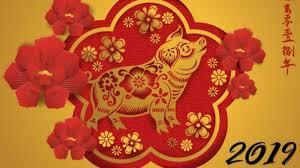 Anul Porcului de Pământ in zodiacul chinezesc aduce bunastare
