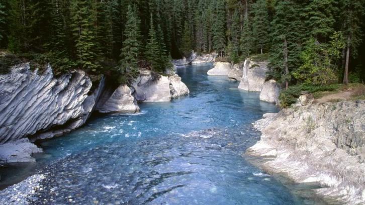 Cea mai curată apă de pe Planetă este în Munții Bucegi!