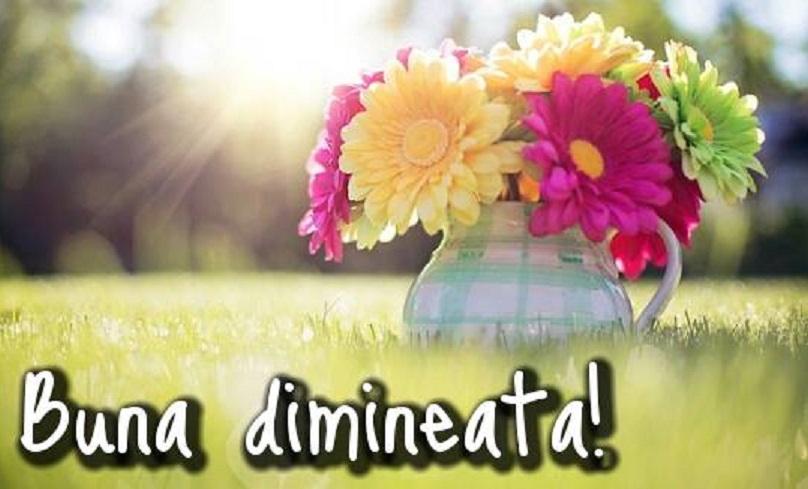 """Bună dimineața, iubirea umple viața! Dă-i un mesaj în fiecare dimineață """"jumătății"""" tale! O să-i facă ziua frumoasă!"""