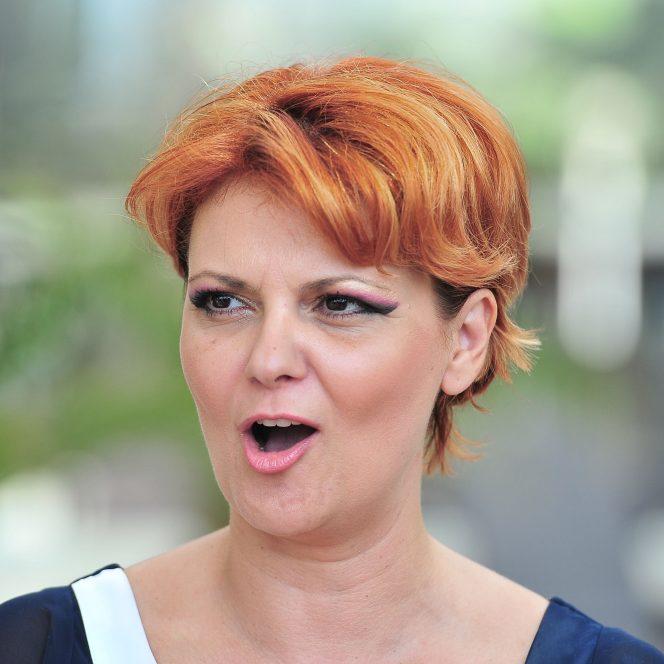 Lia Olguța VAsilescu s-a retras de la Ministerul Dezvoltării