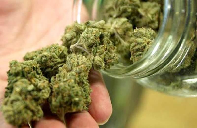 Guvernanții vor să legalizeze canabisul, în scopuri medicinale