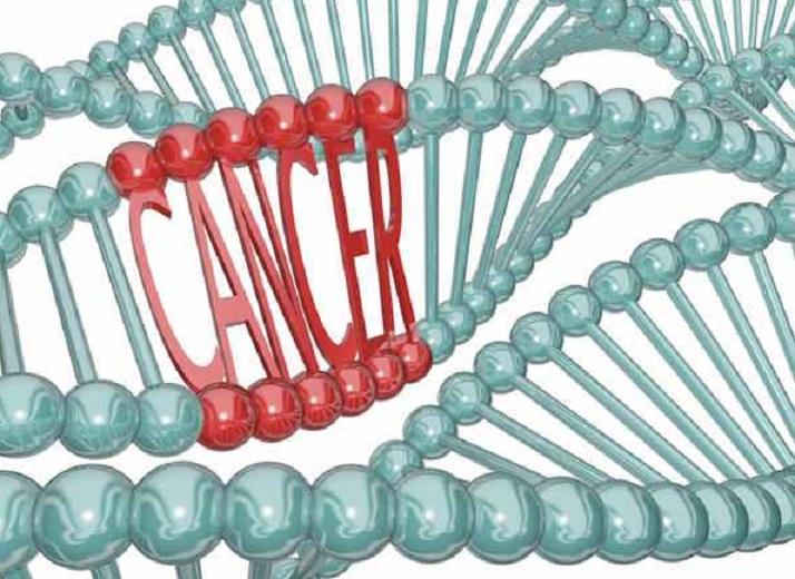Anumite alimente favorizează modificările genetice din organism care duc la cancer. Lista neagră e aici, în acest articol!
