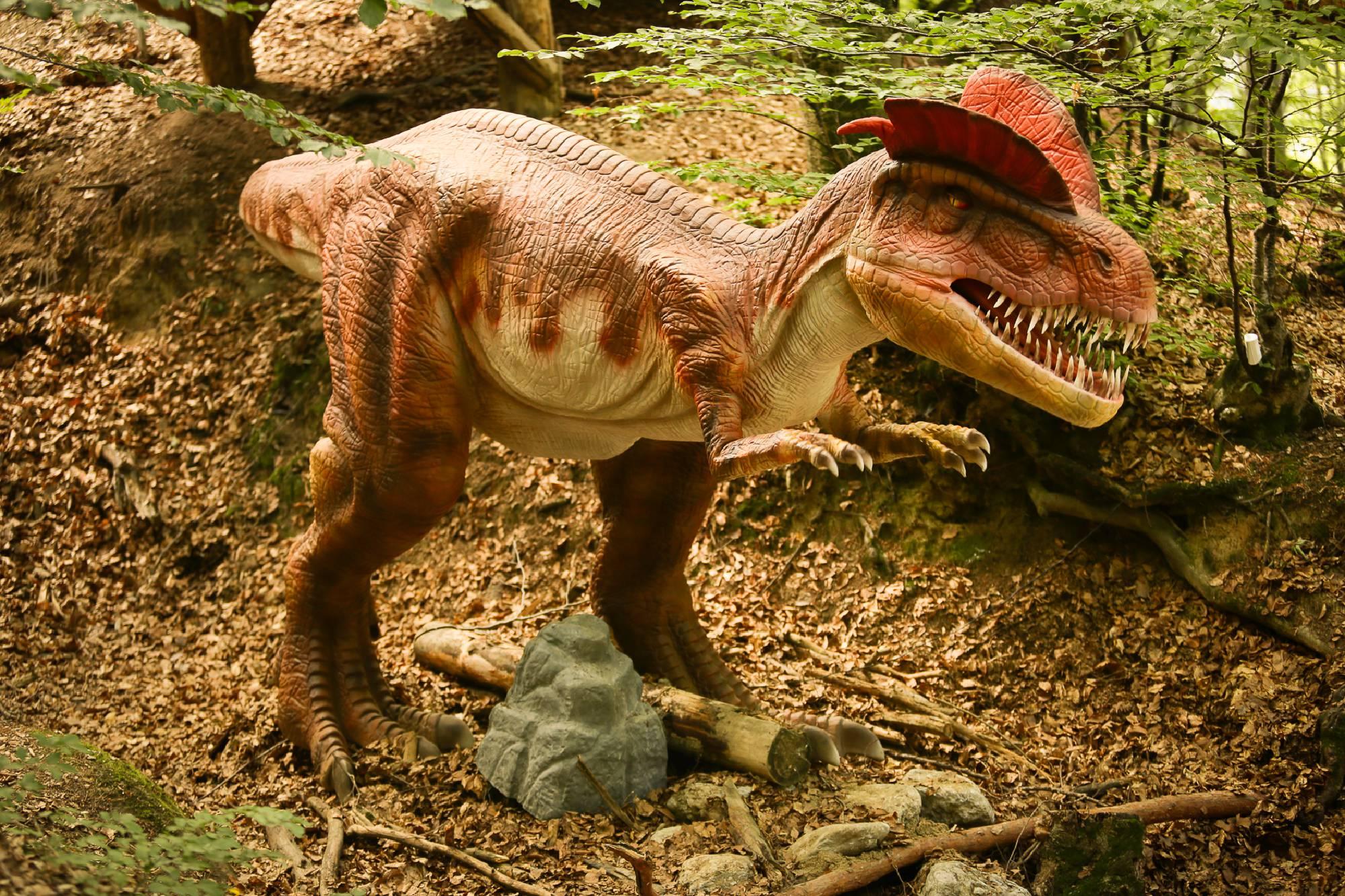 La Dino Parc turiștii pot vedea 47 de dinozauri în mărime naturală