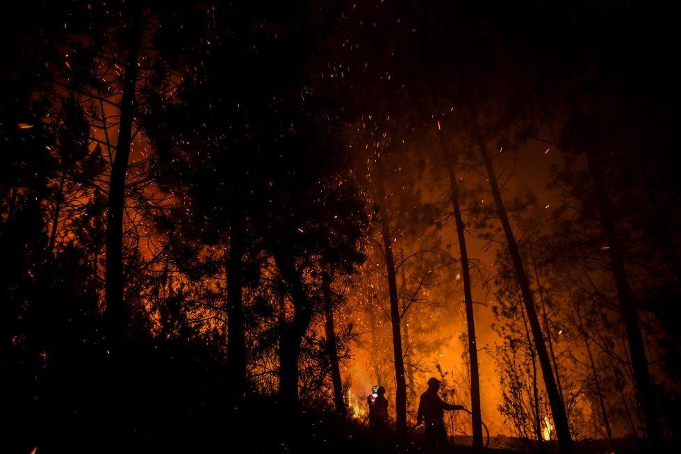 Incendii Portugalia in acest weekend imagine padure arzand