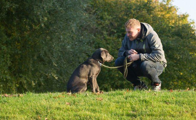 Ce spun cercetătorii despre oamenii care au animale de companie
