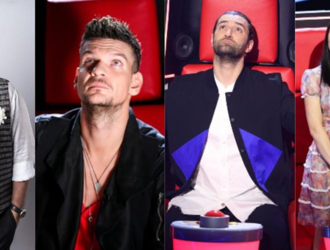 Când începe noul sezon Vocea României la Pro TV. Vocea României