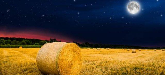 Luna Plină din 14 septembrie este prima din toamna aceasta