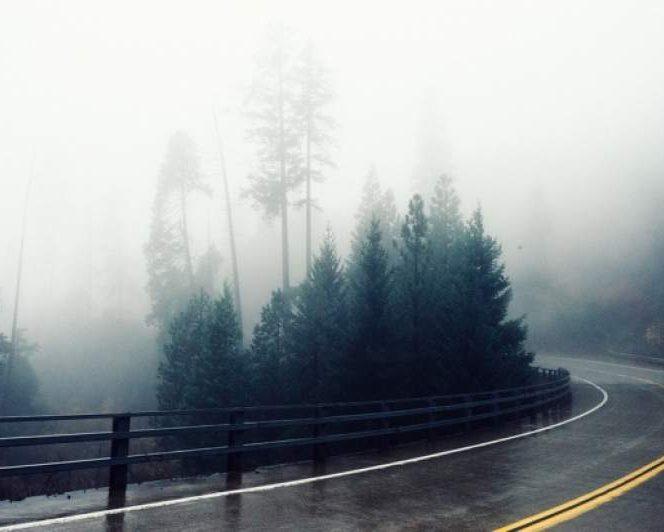 Cod galben de ceață. Ceață
