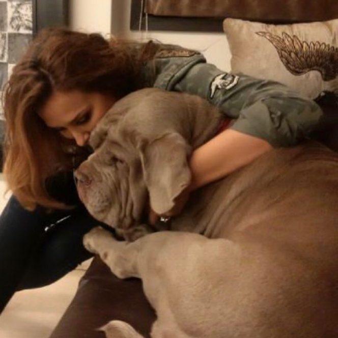 Iulia Vântur, alături de câinele lui Salman Khan, care a murit în urmă cu un an. Sursa foto: Instagram