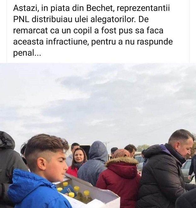 Lia Olguța Vasilescu este acuzată de PNL că minte