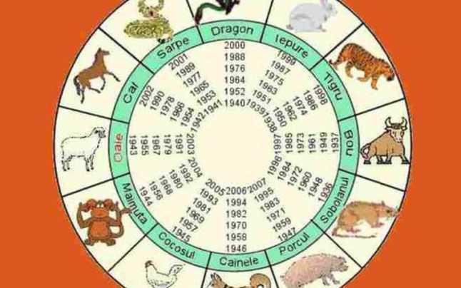 Zodiac chinezesc 2020 Maimuţă